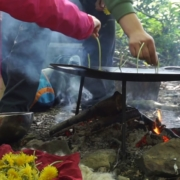 Cooking Dandelion Fritters