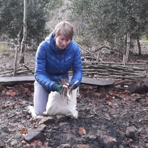 Winter Fire Lighting 1: Gathering and Preparing Materials